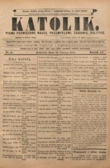 Katolik, 1882, R. 15, nr 48