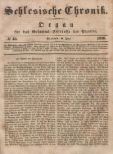 Schlesische Chronik, 1846, Jg. 11, No. 45