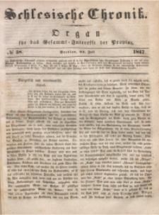 Schlesische Chronik, 1847, Jg. 12, No. 58