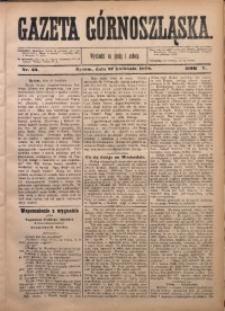 Gazeta Górnoszląska, 1878, R. 5, Nr. 33