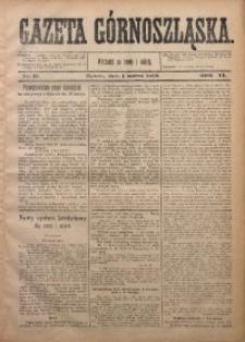 Gazeta Górnoszląska, 1879, R. 6, Nr. 17