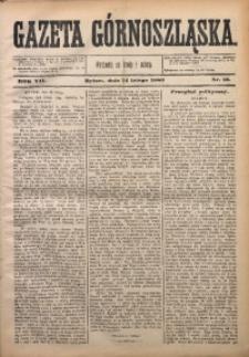 Gazeta Górnoszląska, 1880, R. 7, Nr. 13