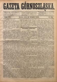 Gazeta Górnoszląska, 1880, R. 7, Nr. 66
