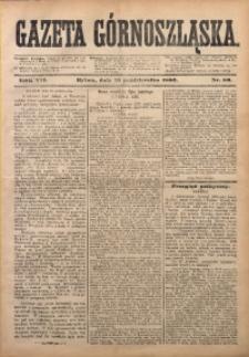 Gazeta Górnoszląska, 1880, R. 7, Nr. 80