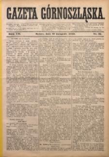 Gazeta Górnoszląska, 1880, R. 7, Nr. 91