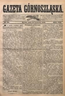 Gazeta Górnoszląska, 1881, R. 8, Nr. 30