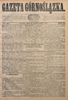 Gazeta Górnoślązka, 1884, R. 11, Nr. 40