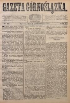 Gazeta Górnoślązka, 1884, R. 11, Nr. 41