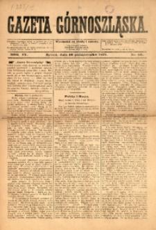 Gazeta Górnoszląska, 1877, R. 4, Nr. 80
