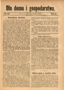 Dla Domu i Gospodarstwa, 1913, R. 3, Nr. 36