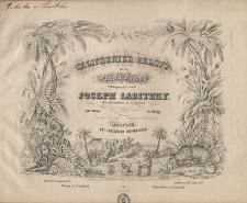 Californier-Galopp für das Piano Forte, 159.tes Werk