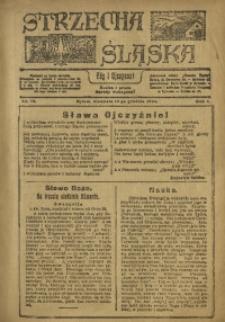 Strzecha Śląska, 1920, R. 1, nr 13