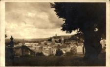 Brzeżany. Widok na kościół farny z góry Bernardyńskiej.