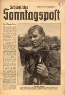 Schlesische Sonntagspost, 1943, Jg. 14, Nr. 46