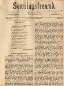 Sonntagsfreund, 1894, Jg. 5, Nr. 42