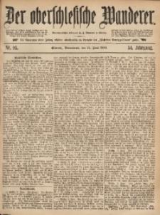Der Oberschlesische Wanderer, 1881, Jg. 54, Nr. 95