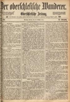 Der Oberschlesische Wanderer, 1888, Jg. 61, Nr. 244