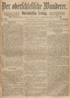 Der Oberschlesische Wanderer, 1893, Jg. 66, Nr. 234