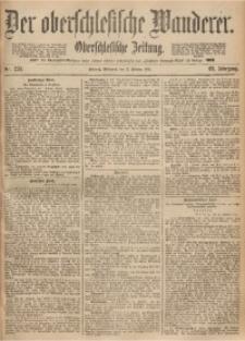 Der Oberschlesische Wanderer, 1893, Jg. 66, Nr. 235