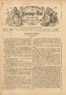 Sonntags-Blatt für Jedermann aus dem Volke, 1888, Nr. 20