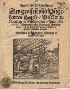 Eigentliche Beschreibung des grossen und ungehewren Hagels, welcher zu Namsslaw in Schlesien den 15. Junij dis 1593. Jahres mit grosser Macht vnd Anzal gefallen [...]