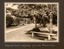 Fragment skweru miejskiego przy ulicy Piłsudskiego