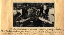 Cmentarz Powązkowski w Warsawie na grobie śp. Amelji Malhomme