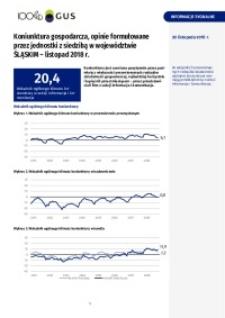 Koniunktura gospodarcza, opinie sformułowane przez jednostki z siedzibą w województwie śląskim - Listopad 2018