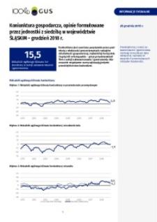 Koniunktura gospodarcza, opinie sformułowane przez jednostki z siedzibą w województwie śląskim - Grudzień 2018