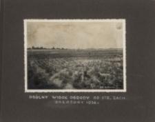 Ogólny widok ogrodu od strony zachodniej założony w 1930 roku