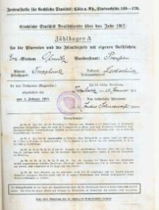 Statystki kościelne parafii Trójcy Świętej w Opawicy za rok 1917.
