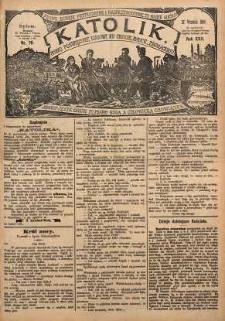 Katolik, 1889, R. 22, nr 78