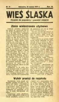 Wieś Śląska, 1938, R. 3, nr 39