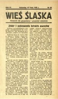 Wieś Śląska, 1938, R. 3, nr 88