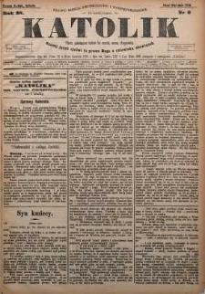 Katolik, 1895, R. 28, nr 6