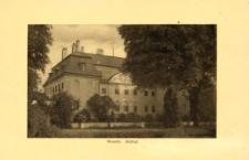 Zamek Branitz w Chociebożu.