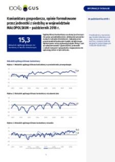 Koniunktura gospodarcza, opinie formułowane przez jednostki z siedzibą w województwie małopolskim - październik 2018 r.