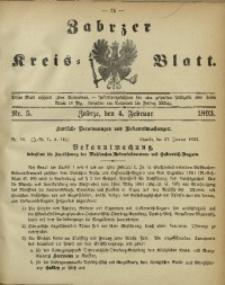 Zabrzer Kreis-Blatt, 1893, St. 5