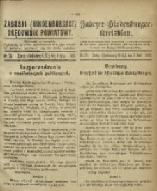 Zabrski (Hindenburgski) Orędownik Powiatowy, 1920, nr 28