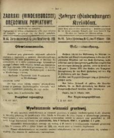 Zabrski (Hindenburgski) Orędownik Powiatowy, 1920, nr 44
