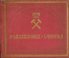 Die Steinkohlen der Gruben des Fürsten von Pless in Polnisch-Oberschlesien
