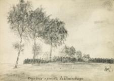 Krajobraz z powiatu lublinieckiego