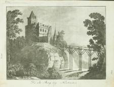 Die alte Burg bey Fürstenstein