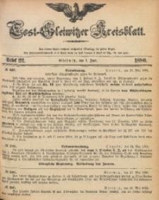 Tost-Gleiwitzer Kreisblatt, 1880, Jg. 38, St. 22