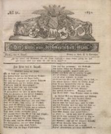 Der Bote aus der Grafschaft Glatz, 1831, No. 31