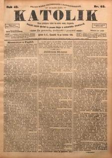 Katolik, 1910, R. 43, nr 45