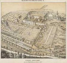 Schloss Grafenort aus der Vogelschau in Jahre 1738