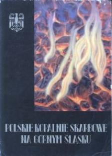 Polskie Kopalnie Skarbowe na Górnym Śląsku. Skarboferme
