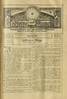 Sterne und Blumen, 1916, Nr. 35