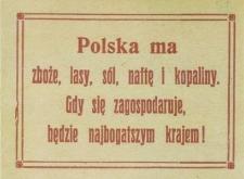 Polska ma zboże, lasy, sól, naftę i kopaliny. Gdy się zagospodaruje, będzie najbogatszym krajem!